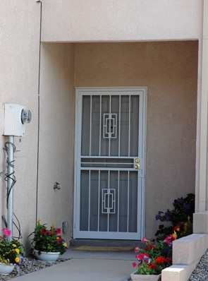 Security screen door in Contemporary deisgn