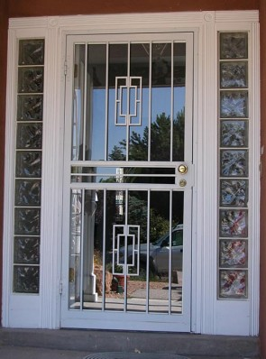 Security storm door in Contemporary design