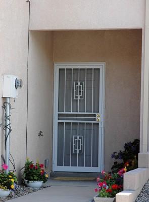 Security screen door in Contemporary deisgn