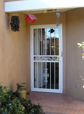 Security Storm Door in Seville