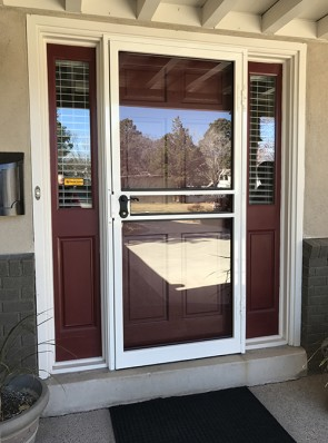 Security storm door without pickets