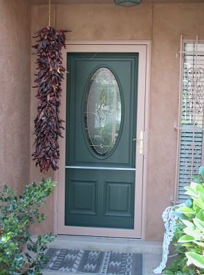Security storm door full view without pickets