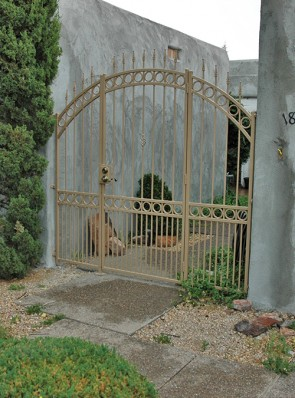 Arched entry gate and side panels with circles, doggie pickets, and spears